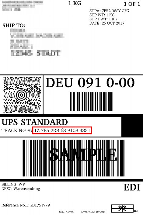 Ups Paket International